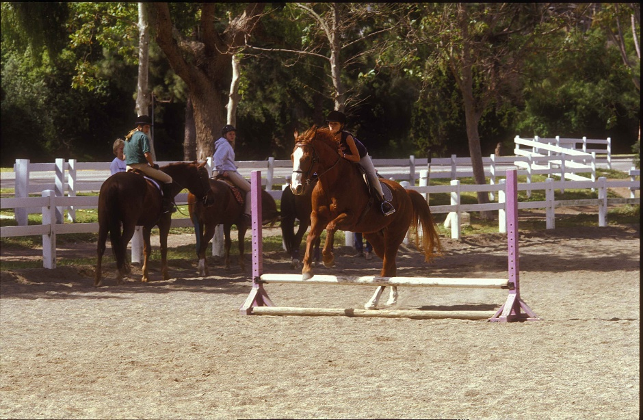 Horse Jumping at Dapplegray