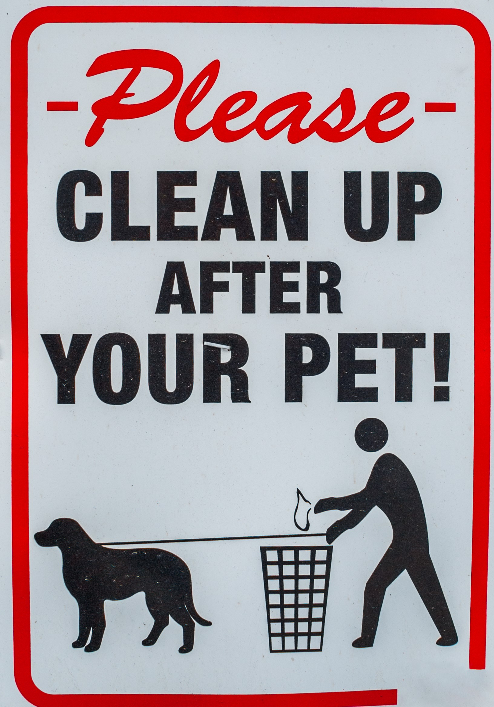 clean up after your pet image