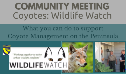 Wildlife Watch banner